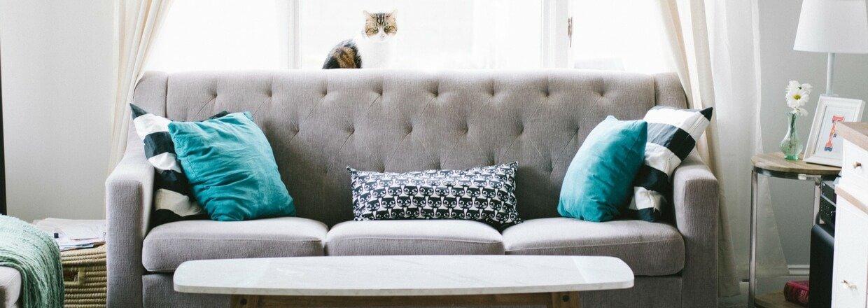 Rensning af sofa