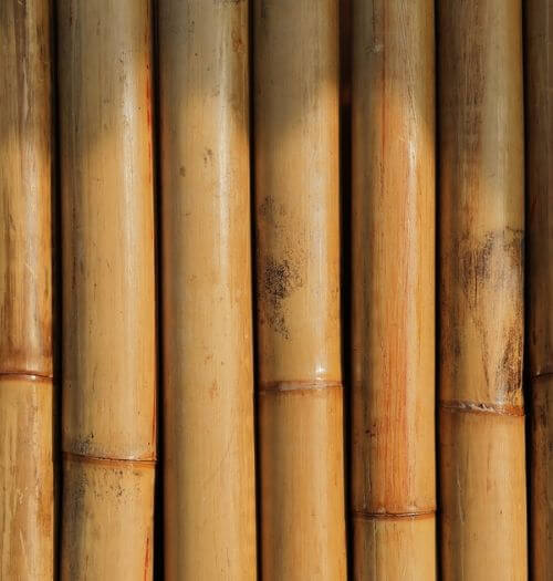 bambus, bambuskurve, bambuskurv, bambus kurve, bambus kurv, boboonline, materialeguide