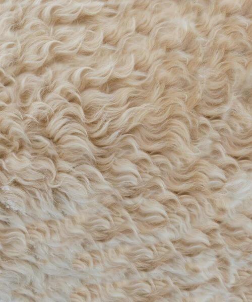 skind, fårskind, fåreskind, stoleskind