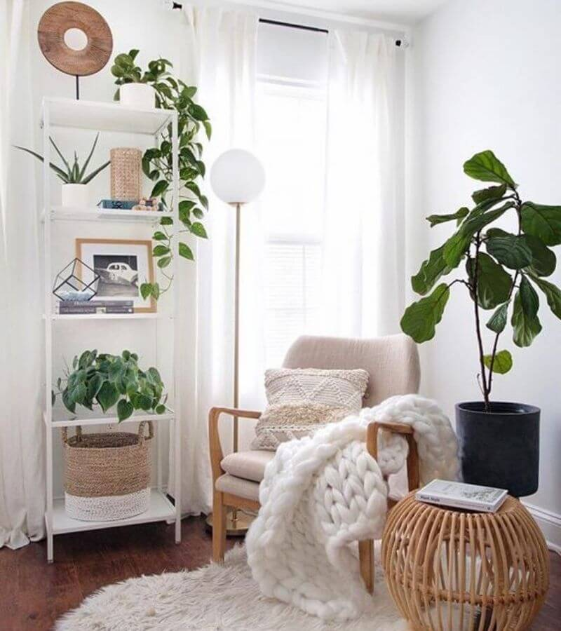 planter i stuen