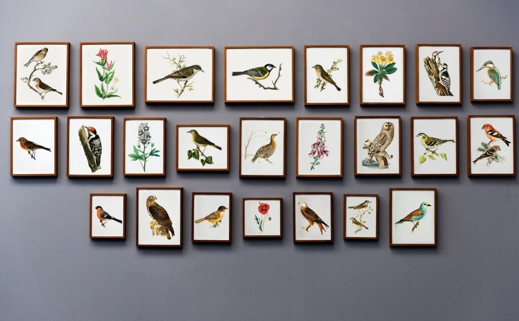 vægdekoration, vægbeklædning, malerier, foto, billeder, vægudsmykning, vægdekorationer