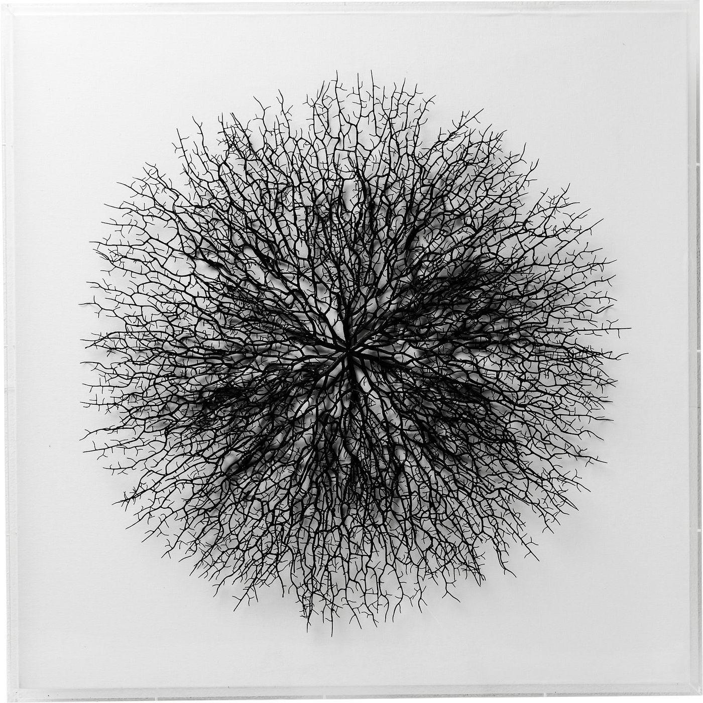 Image of   KARE DESIGN vægdekoration, m. Ramme Vascular White 90x90cm
