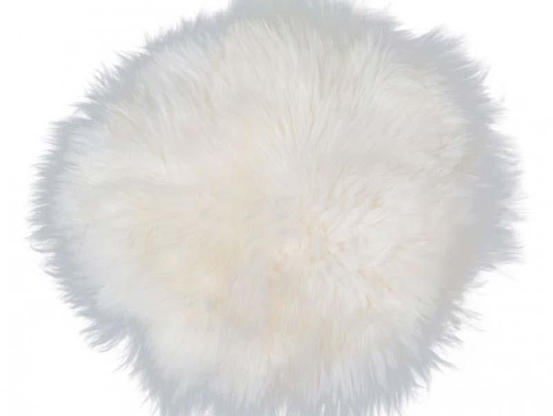 Billede af New Zealand rund skindhynde, hvid