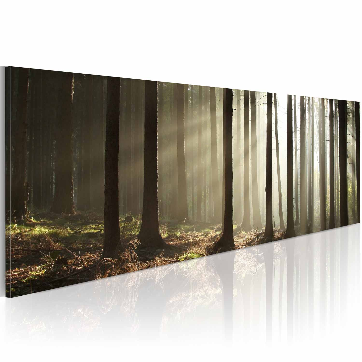 artgeist – Artgeist morning in the woods billede - multifarvet canvas print (40x120) på boboonline.dk