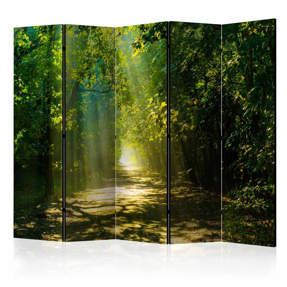 Image of   ARTGEIST Skærmvæg - Road in Sunlight II [Room Dividers]