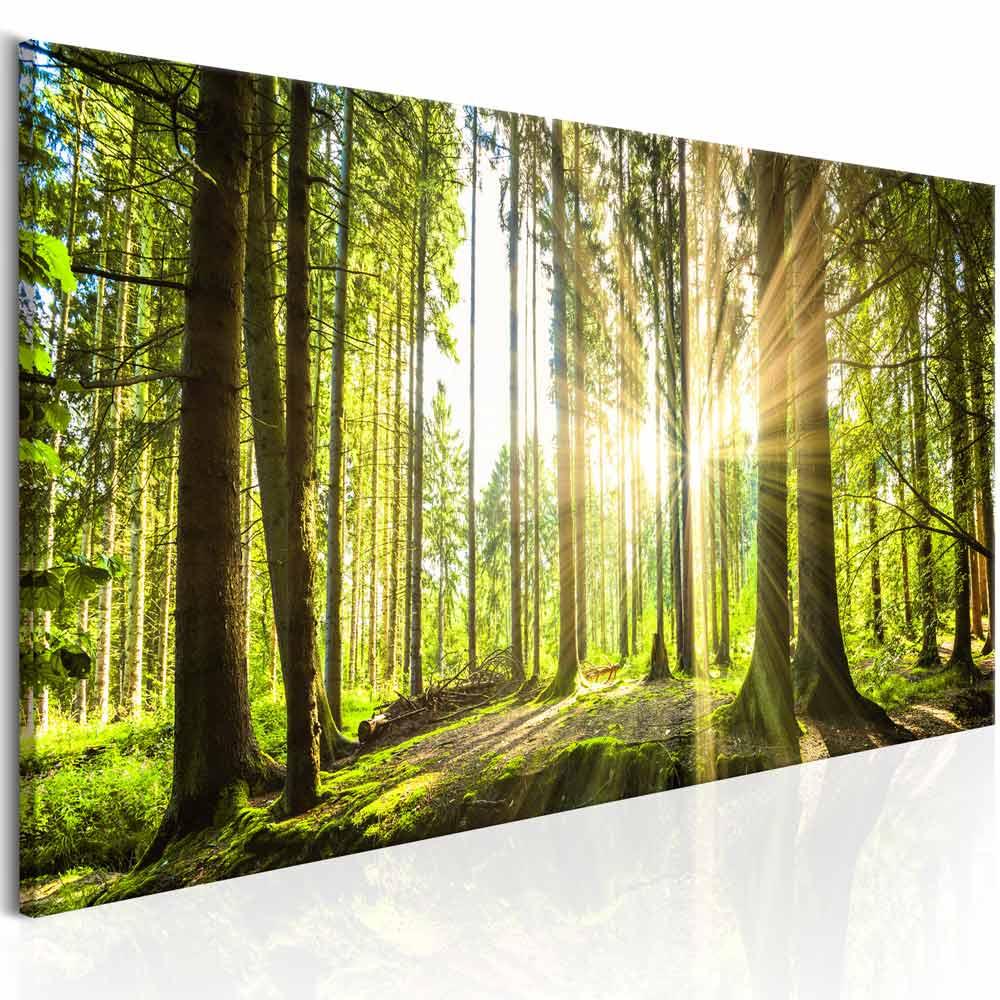 artgeist – Artgeist daylight billede - multifarvet print (40x120) fra boboonline.dk