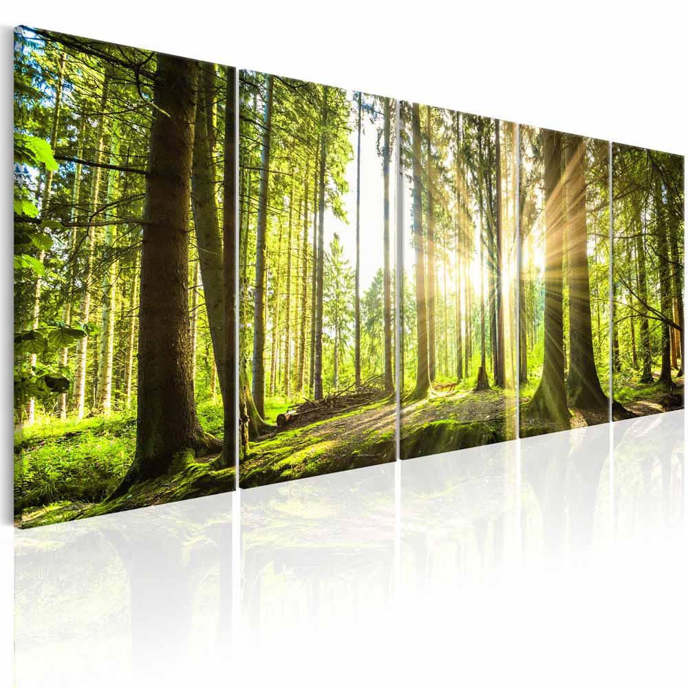 Artgeist sunlight billede - multifarvet print, 2 størrelser 225x90 fra artgeist på boboonline.dk