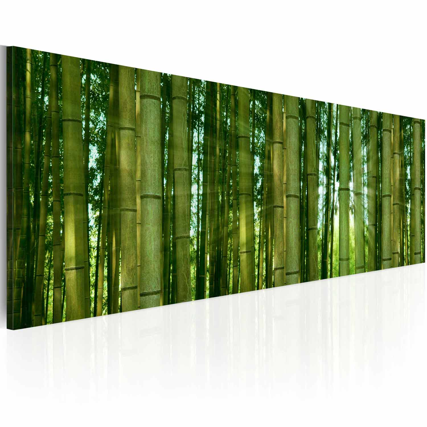 Image of   ARTGEIST Bamboo in the sunshine billede - grøn canvas print (40x120)